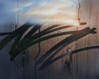 8h14min25sec, En campagne, 65x50, Acryilique sur toile et pexiglas, 2017 2400